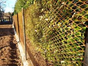 Fornitura recinzioni da giardino a Venezia